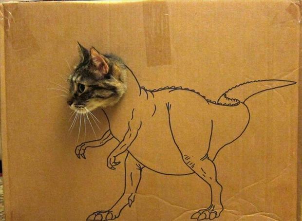 https://www.askideas.com/media/16/Cat-Face-Dinasaur-Funny-Box-Image.jpg