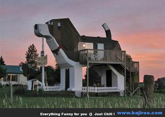 Funny home in the sea for Amazing home pictures