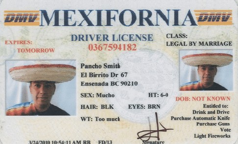 Picture Fake Driver License Funny