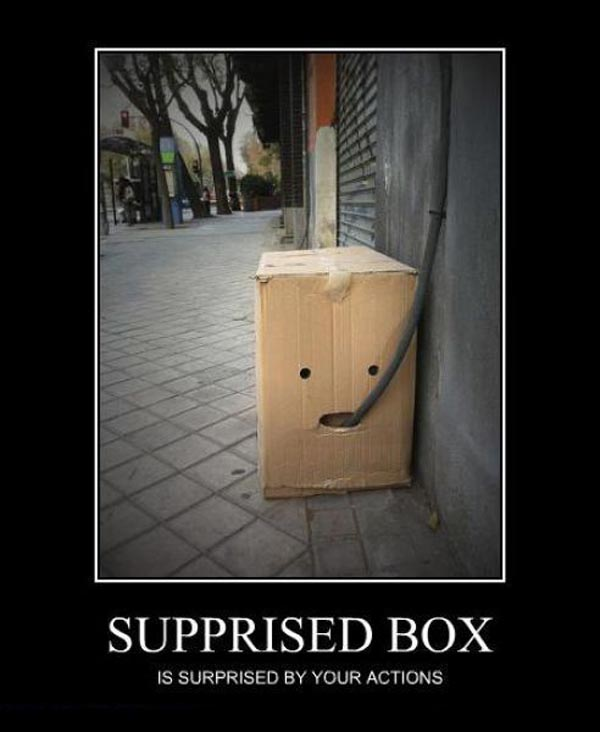 30 Very Funny Box Pictures