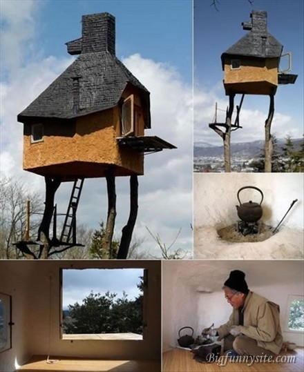 Funny Treehome Image