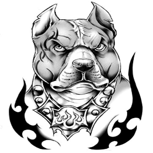 pitbull tattoo stencil the image kid has it. Black Bedroom Furniture Sets. Home Design Ideas