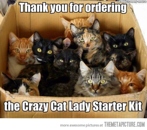 Thank You For Ordering The Crazy Cat Lady Starter Kit Funny Meme