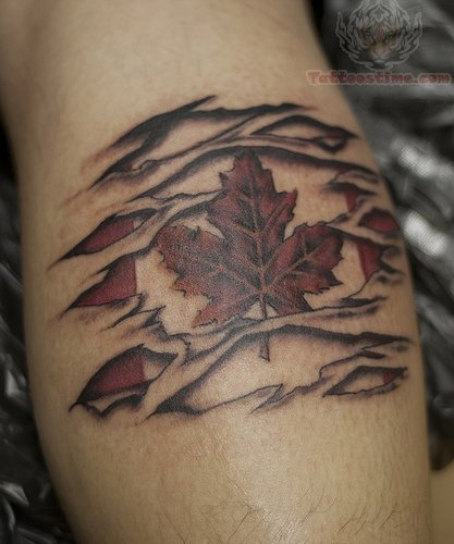 22 torn skin tattoo images pictures and design ideas for Canadian patriotic tattoos