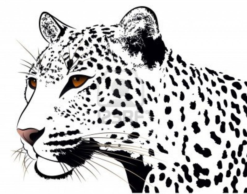 14 Leopard Tattoo Designs And Sketches on jaguar wallpaper