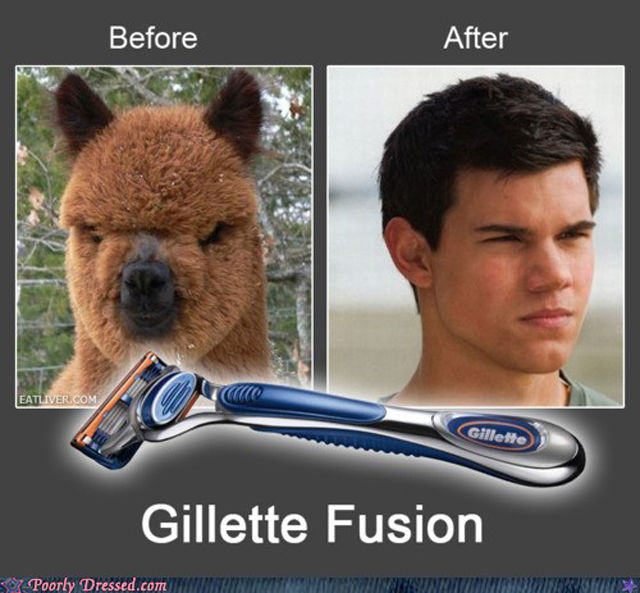 before and after funny fail image