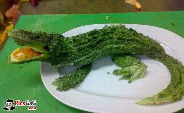 Bitter gourd crocodile vegetable funny picture