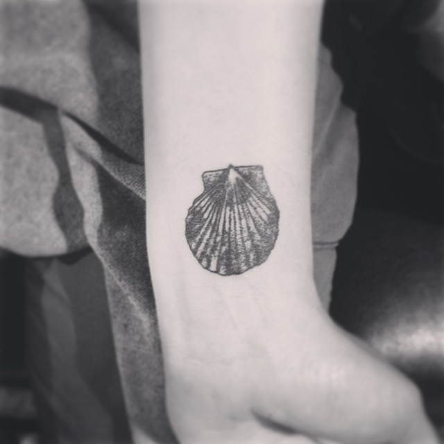 20 beautiful shell tattoo images pictures and design ideas rh askideas com Nautilus Shell Tattoo Meaning Nautilus Shell Tattoo Meaning