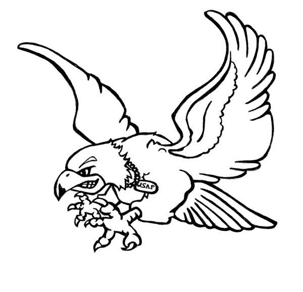flying falcon drawing - 600×578