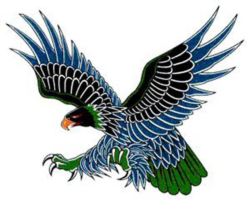 Falcon tattoo design - photo#27