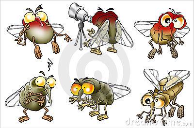 Flies Reading Book Funny Cartoon Image