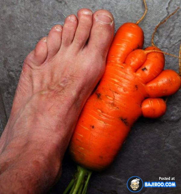 31 Very Funny Vegetables Pictures And Photos