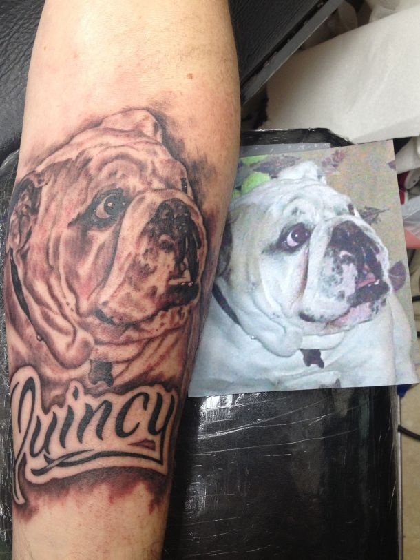 24 Bulldog Tattoo Images Pictures And Design Ideas