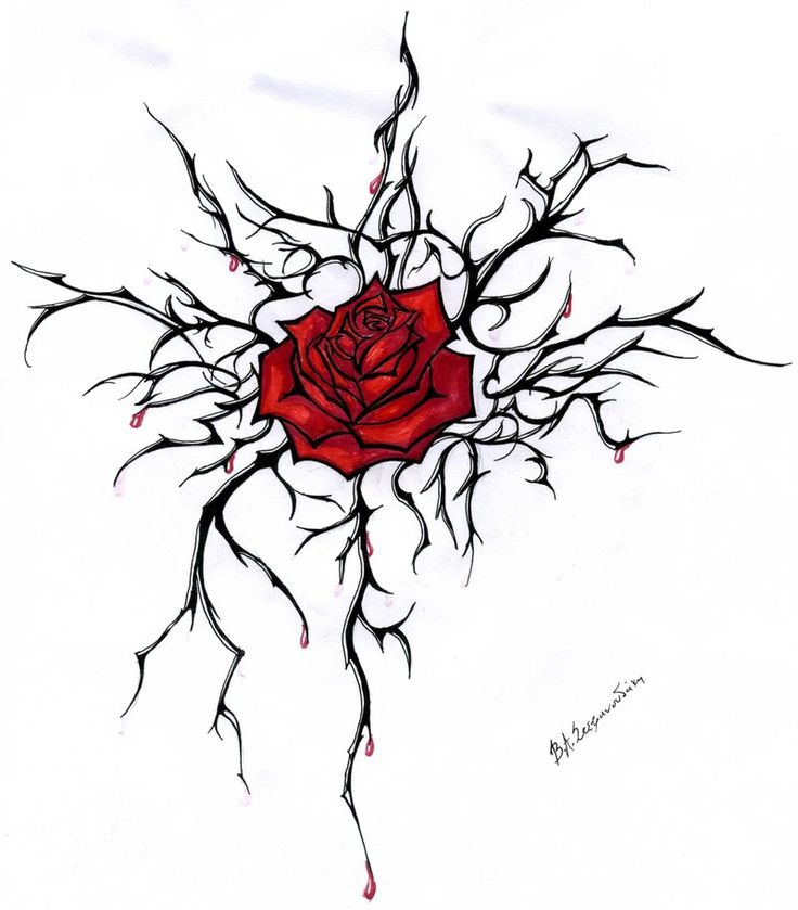 Red Rose With Thorns Tattoo Design By Anastasia