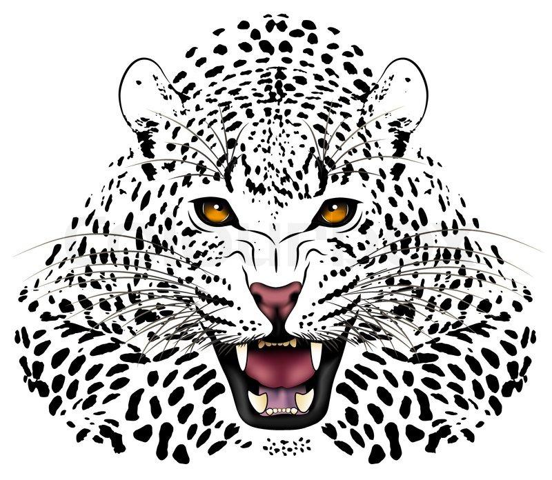 leopard face clip art - photo #18