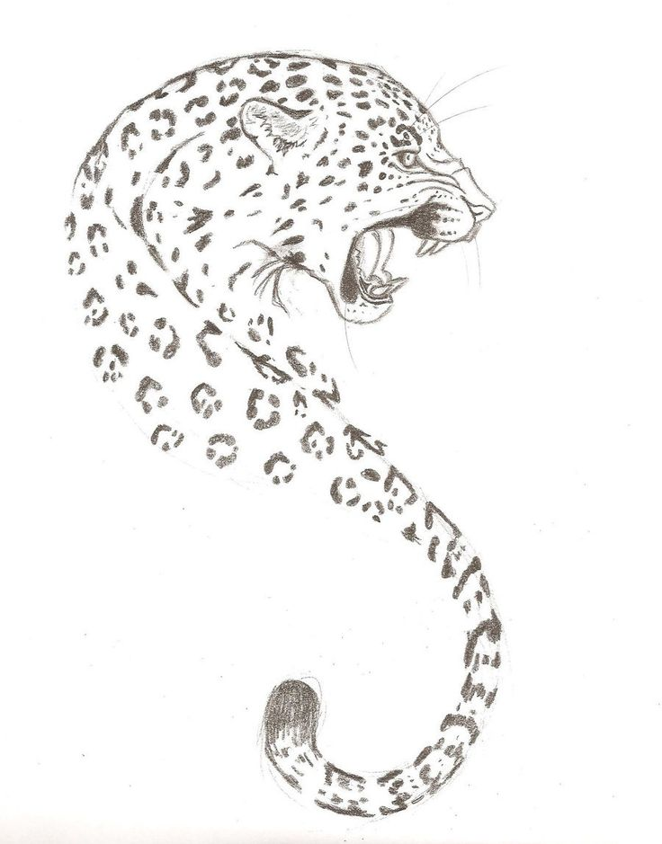 Leopard Tattoo Designs Tumblr