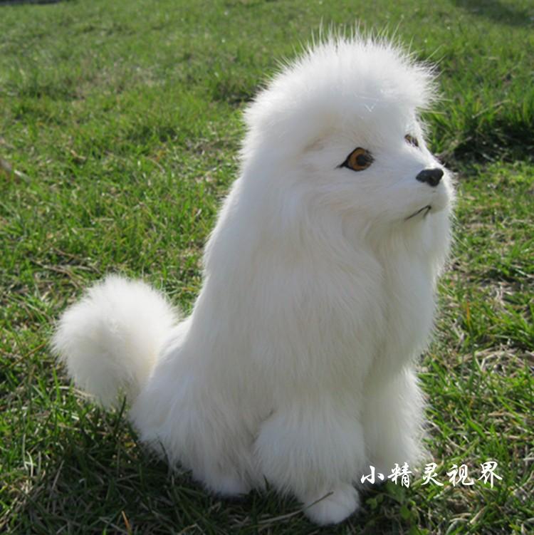Large White Furry Dog Breed