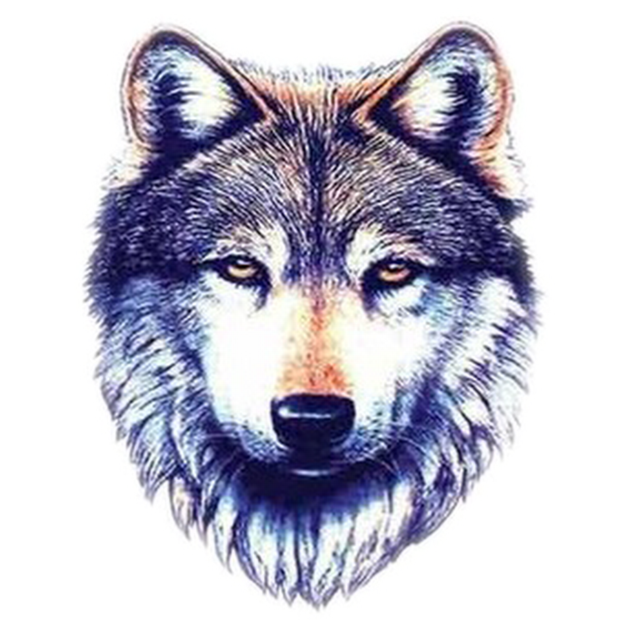 49 latest wolf tattoo designs and ideas for Wolf head tattoos