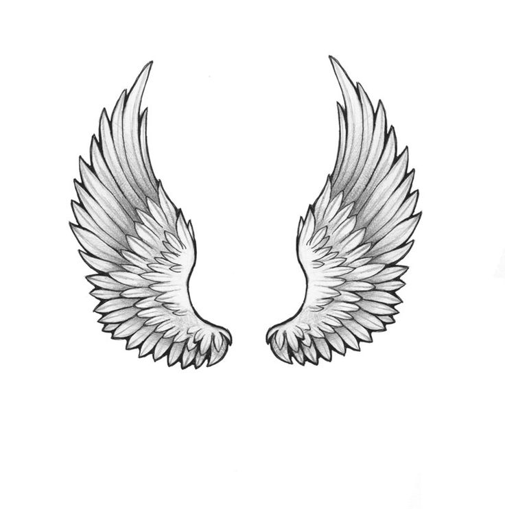 Tattoo Designs Wings: Black And Grey Two Wings Tattoo Design By Anastasiya