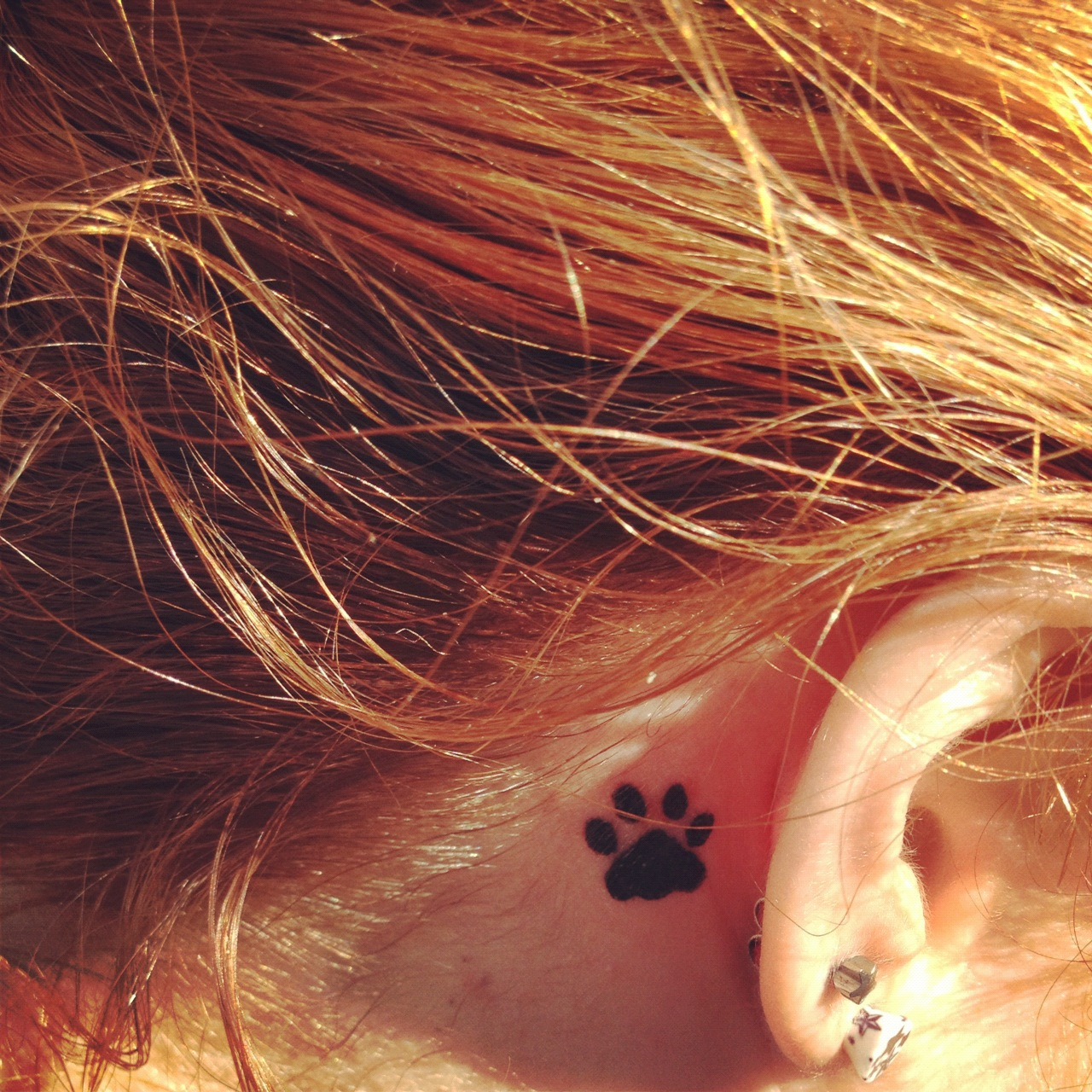 17 Leopard Paw Tattoo Images, Pictures And Photo Ideas