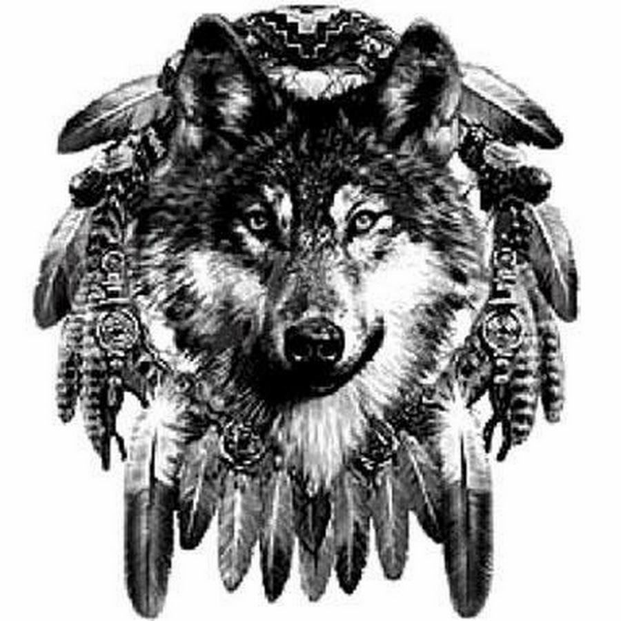 dreamcatcher wolves feathers white - photo #7