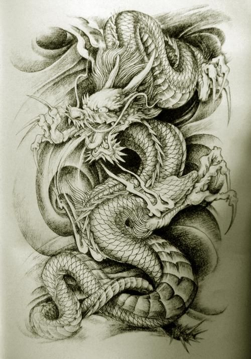 16 asian tattoo designs images and pictures for Dragon tattoo drawings