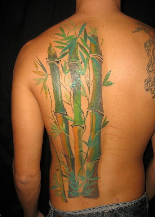 035128b21f252 14 Awesome Bamboo Tree Tattoo Images, Pictures And Photos