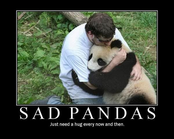 Funny sad pandas poster voltagebd Image collections