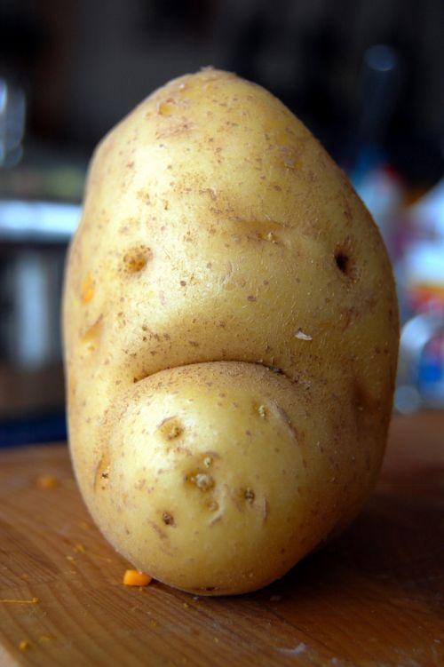 Bikini Potato? | Funny Potatoes | Pinterest | Funny, Pictures and ...