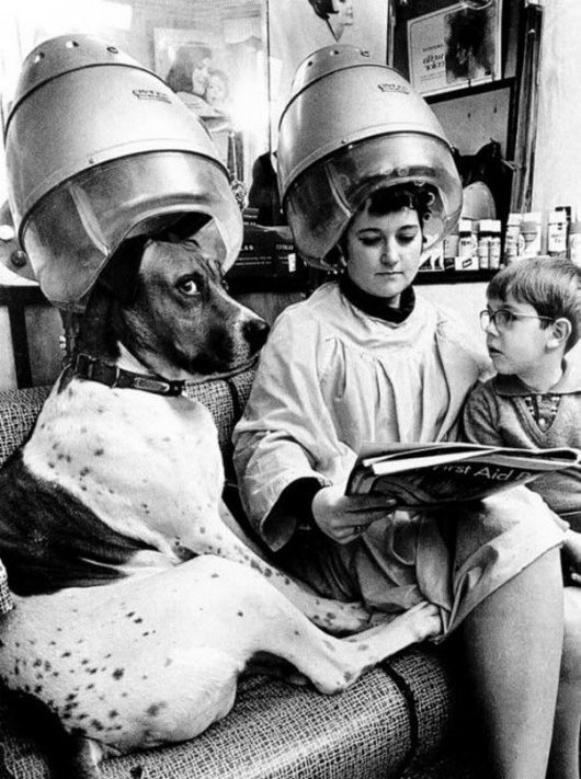 Salon Funny Vintage Image