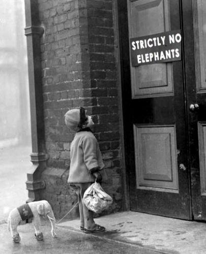 Strictly No Elephants Funny Vintage Image