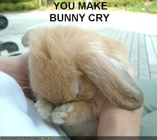You-Make-Bunny-Cry-Funny-Sad-Picture.jpg