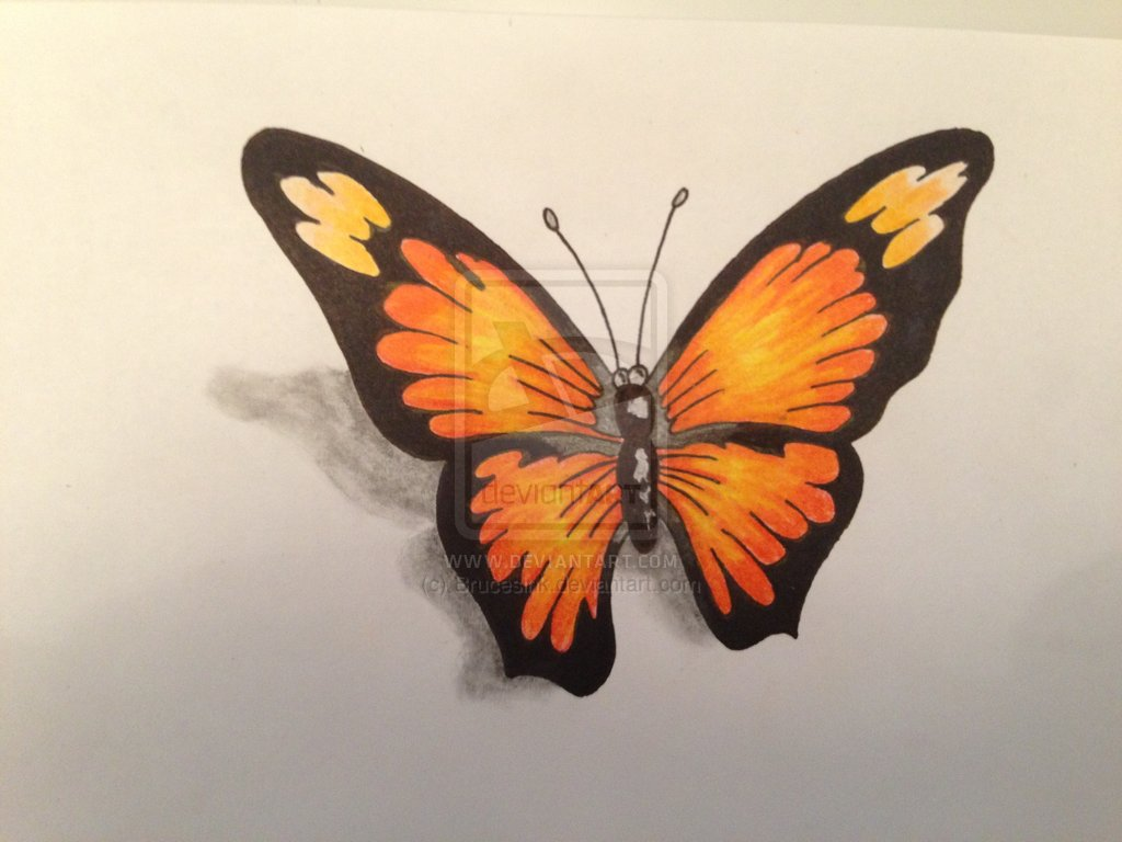 4 incredible 3d butterfly tattoo designs