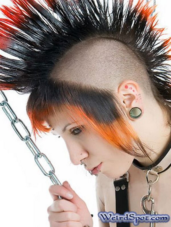 Emo Funny Hairstyle Picture