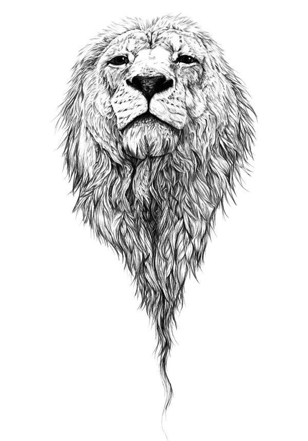82 Famous Lion Tattoo Design U0026 Sketches