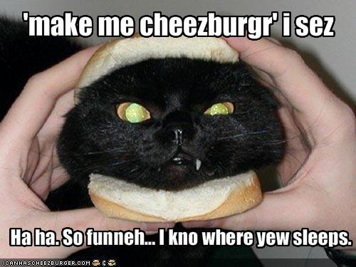 [Image: Cat-Burger-Funny-OMG-Meme-Picture.jpg]