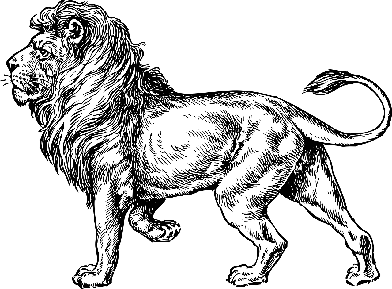 63ad4af06 82 Famous Lion Tattoo Design & Sketches