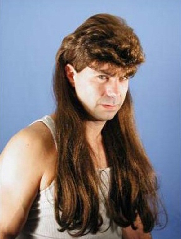 Astonishing 15 Most Funny Mullet Pictures And Images Natural Hairstyles Runnerswayorg