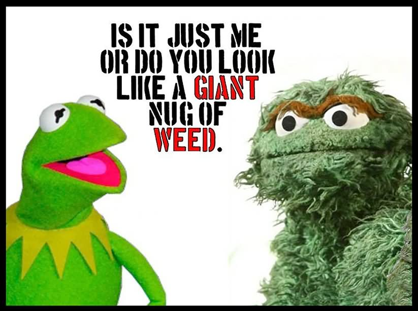 20 Most Funny Weed Pictures And Photos