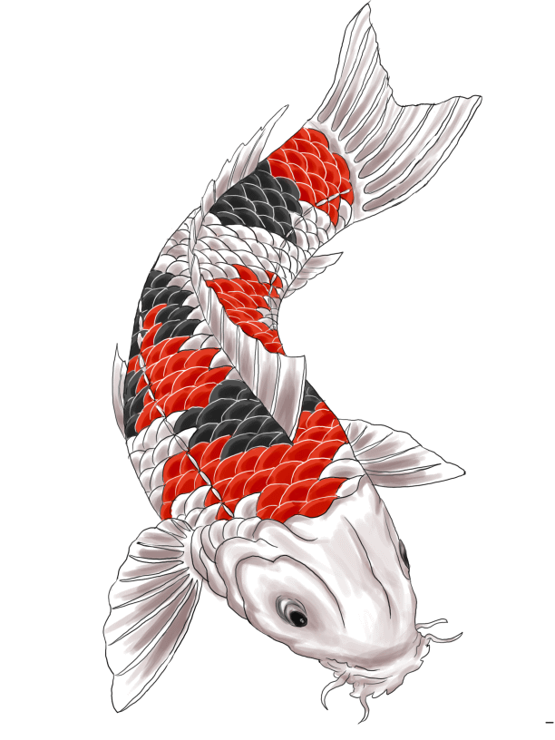 Red and black koi tattoo design by gaikotsu91 for Red and white koi fish
