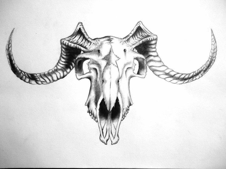 49ee2b333 Black Ink Goat Skull Tattoo Design