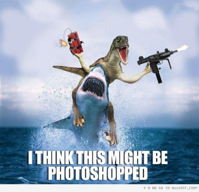 Dragon With Gun On Shark Funny Photoshopped Cool Picture