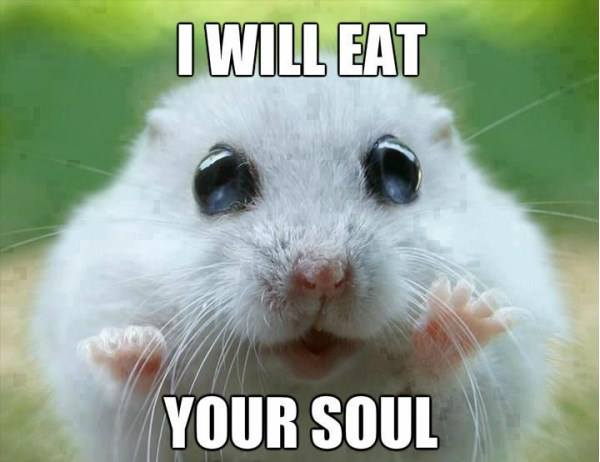 I Will Eat Your Soul Funny Cool Squirrel Image