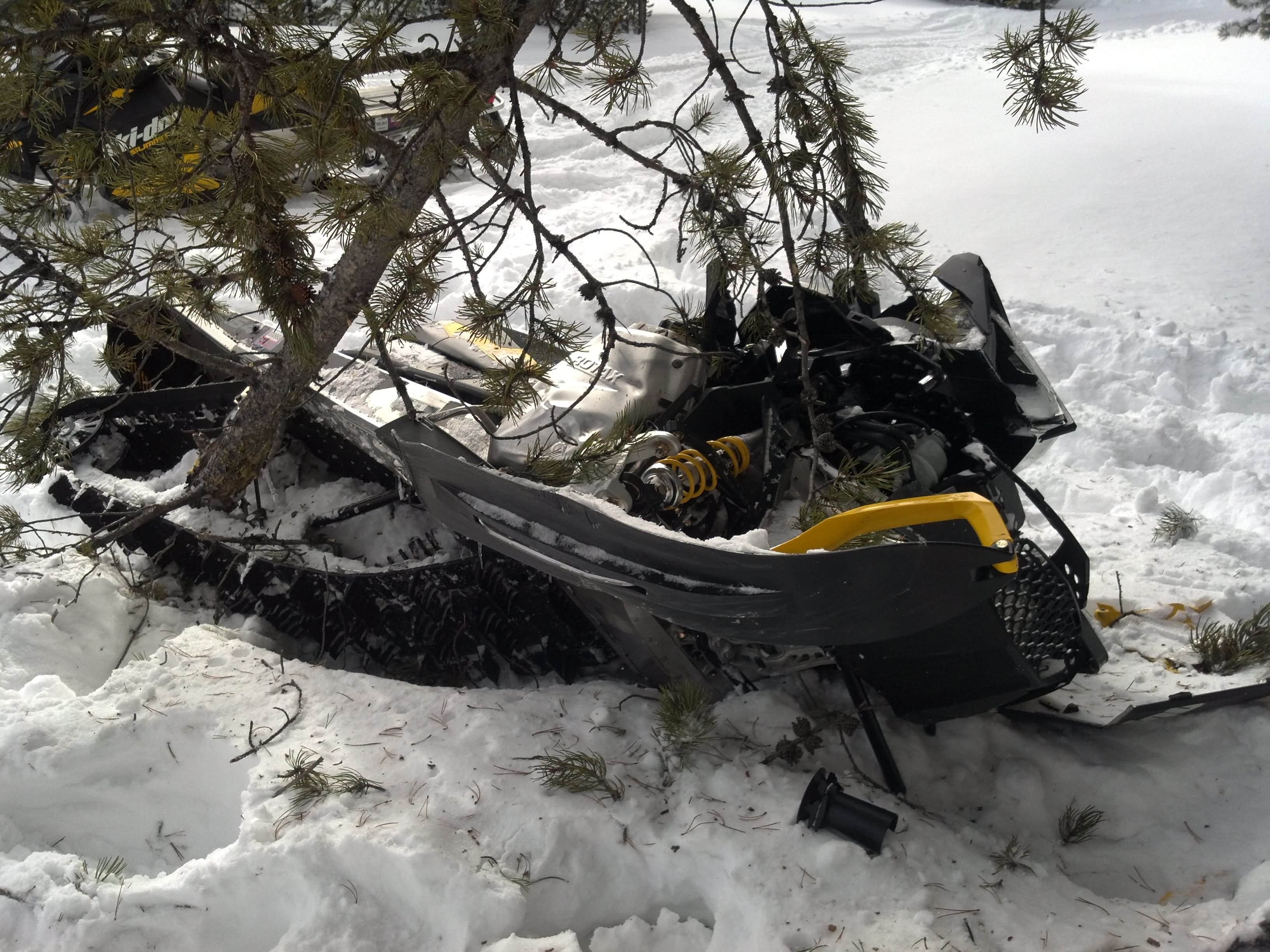 20 Most Funny Sled Pictures And Images