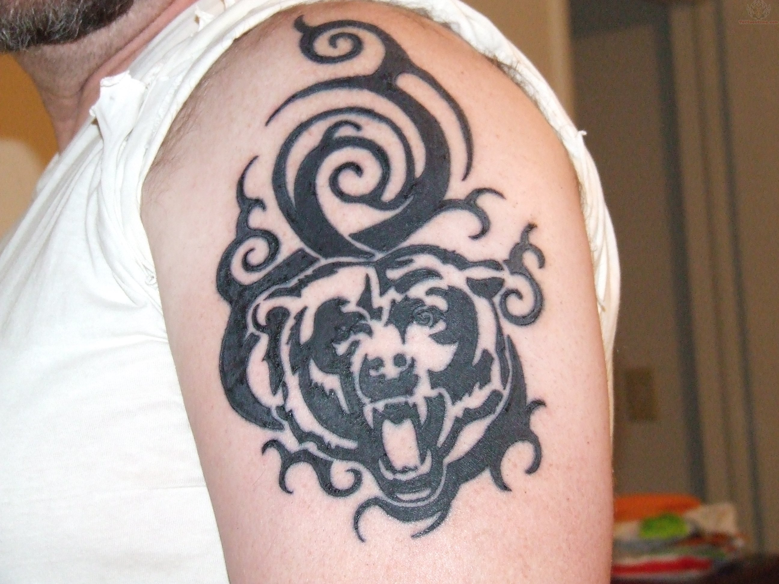 Tribal-Tattoos Black-Tribal-Bear-Head-Tattoo-On-Man-Left-Shoulder
