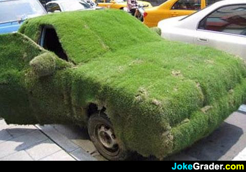 Funny Grass Prank Car Picture