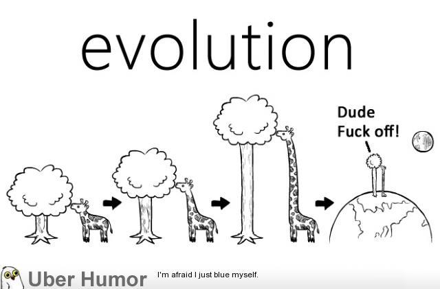 Teoria Ewolucji i 999 999 kamieni