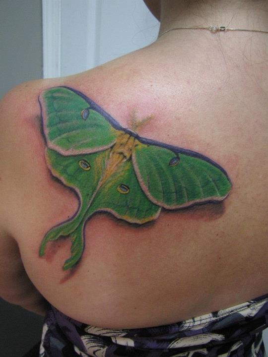 45+ Realistic Moth Tattoos