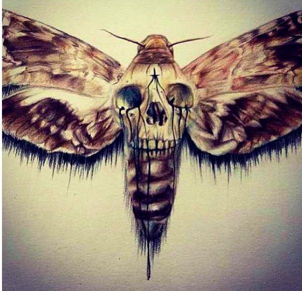 45 Realistic Moth Tattoos