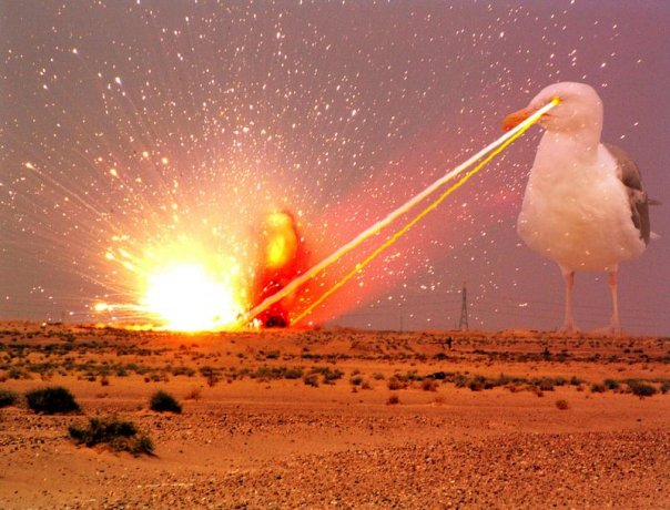 35 Most Funny Laser Photos That Will Make You Laugh Every Time